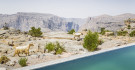 Cliff Pool Villa