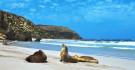 Seal Bay - Kangaroo Island
