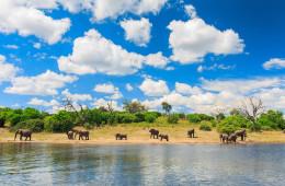Le Botswana, une perle dans son écrin