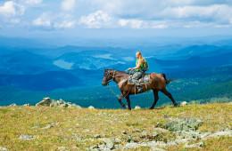Expérience équestre dans les forêts sibériennes