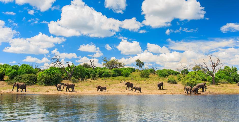 Image 1 - Le Botswana, une perle dans son écrin