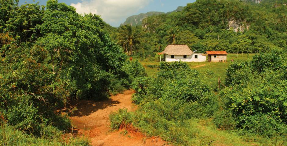 Bild 4 - Cuba Clasica