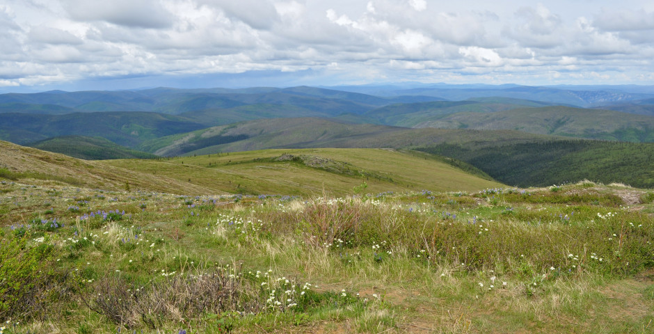 Image 5 - Yukon Experience