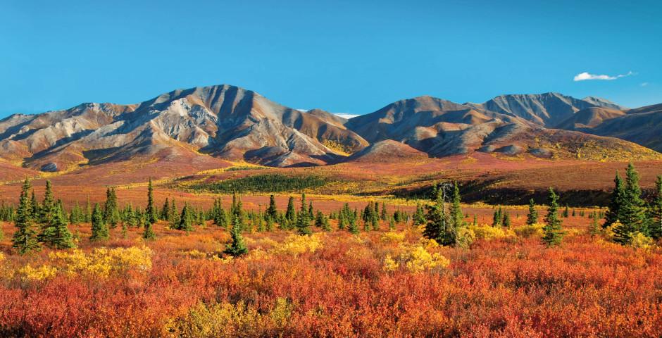Bild 2 - Classic Alaska