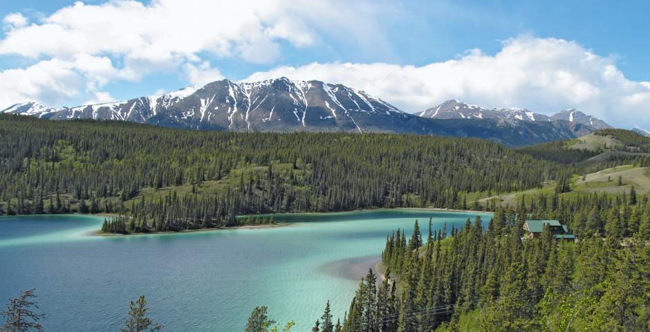 Bild 3 - Alaska-Yukon Explorer