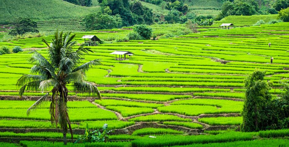 Bild 6 - Nordthailand-Rundreise