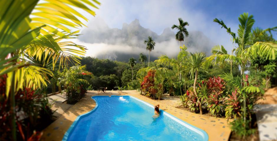 Bild 15 - Dschungelsafari