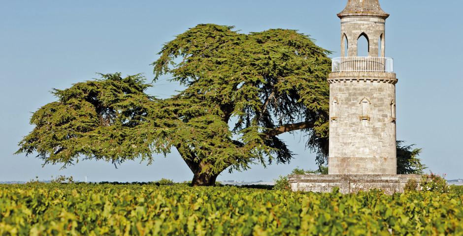 Image 7 - Bordeaux, Sarlat et vallée de la Dordogne