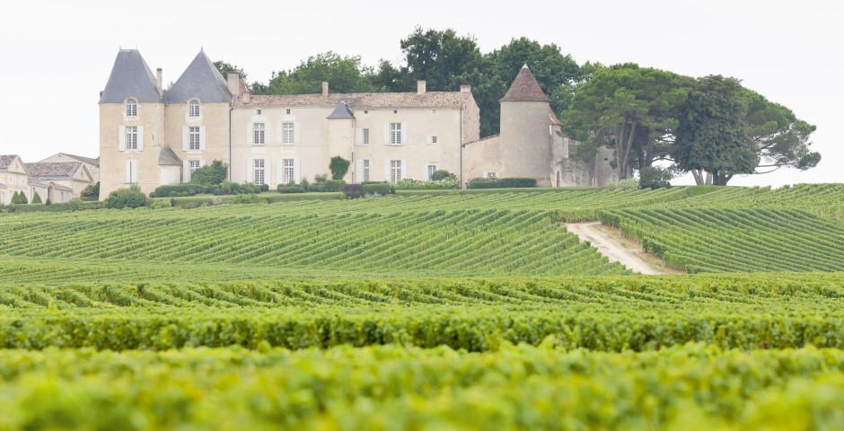 Image 8 - Bordeaux, Sarlat et vallée de la Dordogne