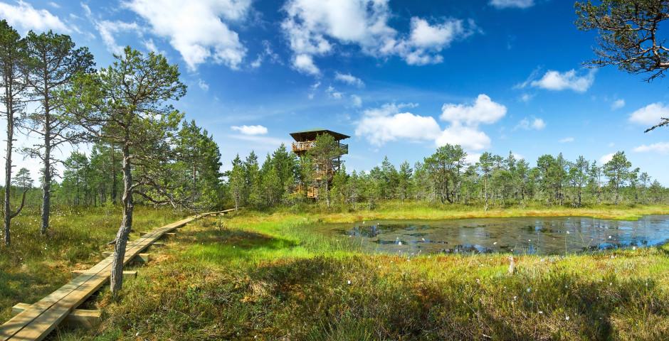 Bild 1 - Estland in Kürze