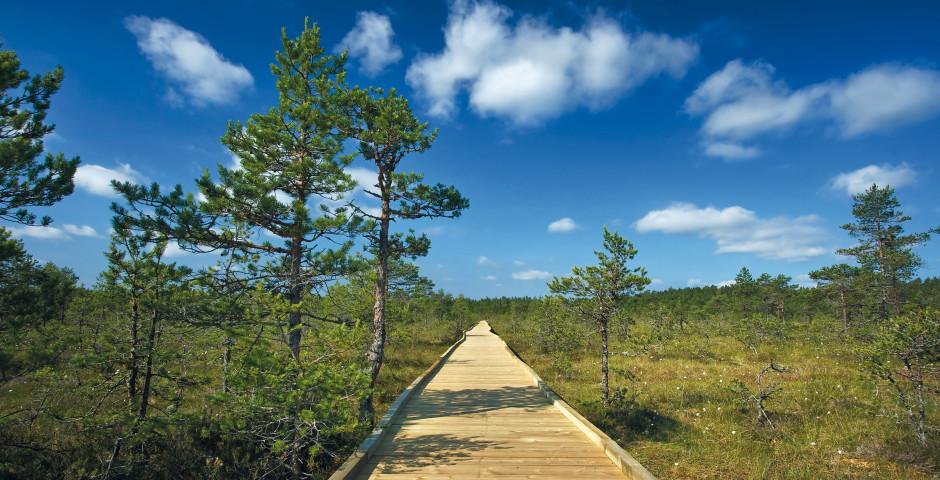 Image 4 - L'Estonie en bref