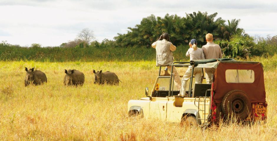Image 3 - Kenya - safari de rêve et mer