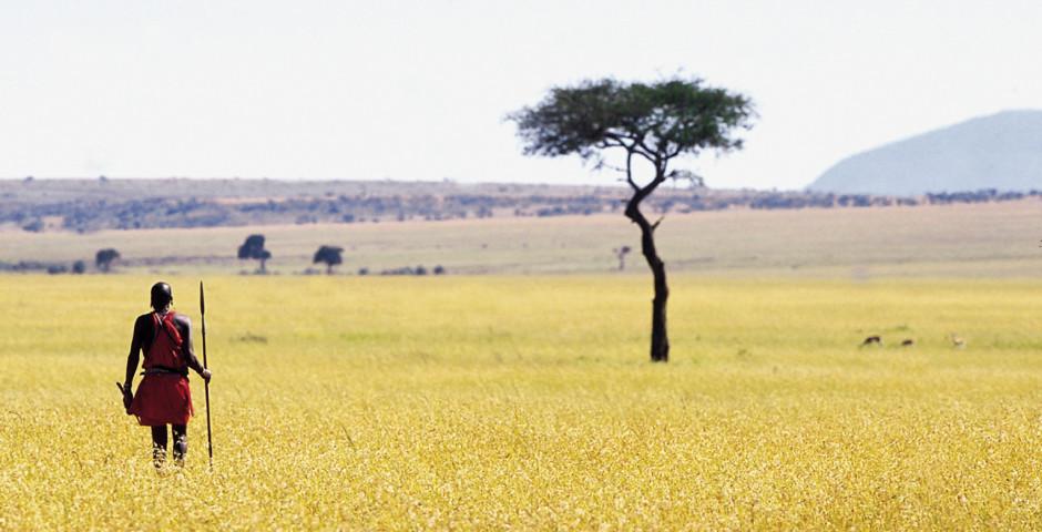 Image 5 - Kenya - safari de rêve et mer