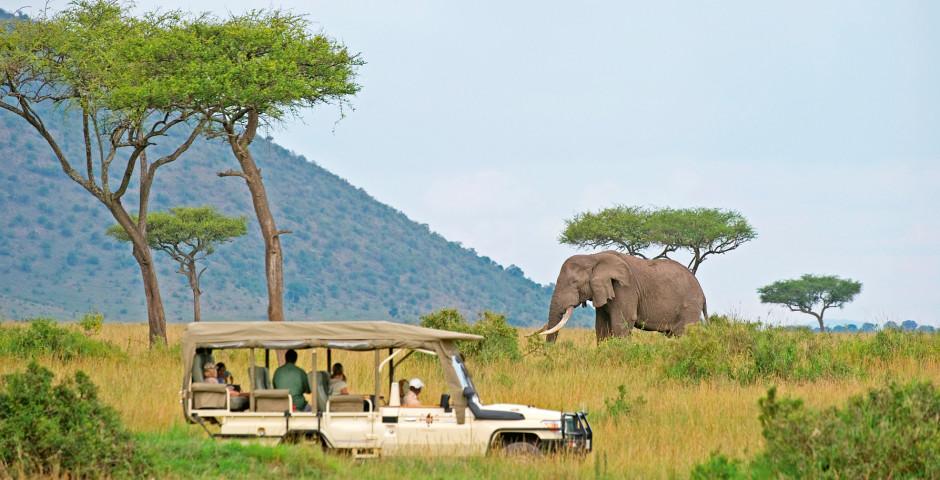 Image 8 - Kenya - safari de rêve et mer