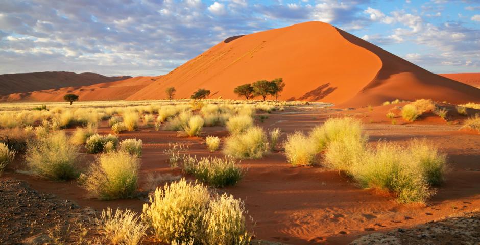 Image 1 - La Namibie, où la magie des déserts
