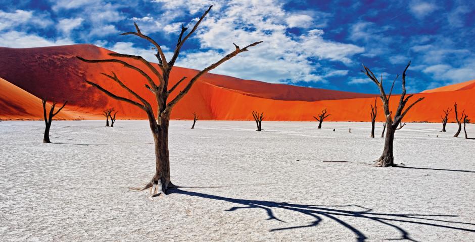 Image 6 - La Namibie, où la magie des déserts