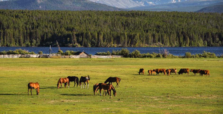 Image 5 - Canada's Wild West