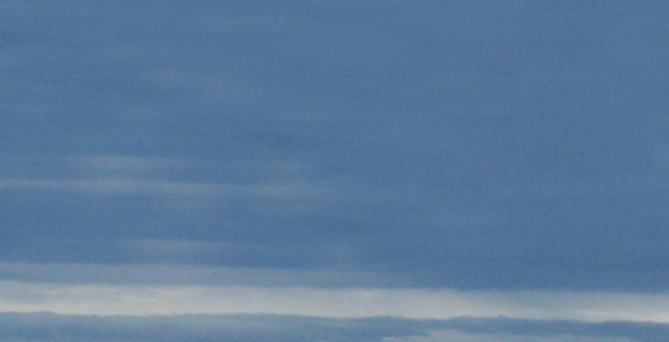 Bild 2 - Natur und Tiere Westkanadas