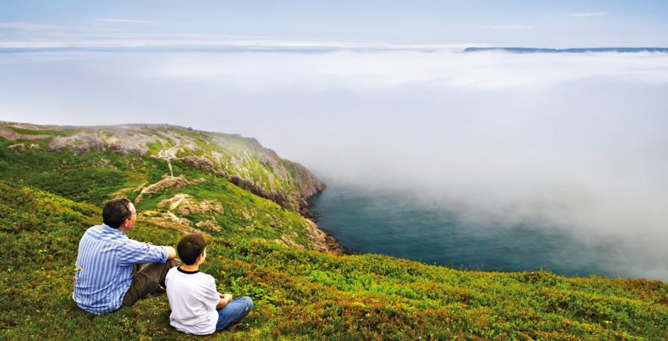 Bild 2 - Wild Labrador and Newfoundland