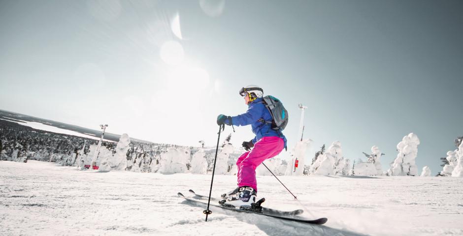 Bild 2 - Skiwoche am Polarkreis