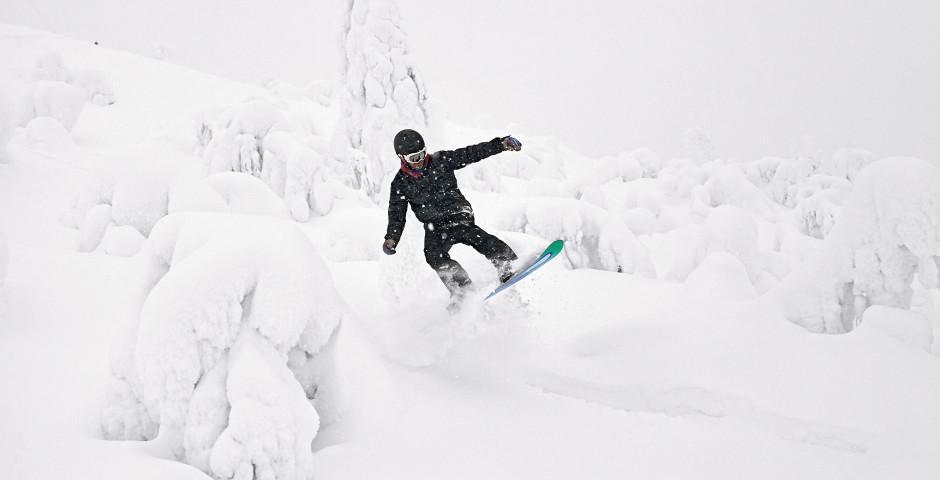 Bild 5 - Skiwoche am Polarkreis