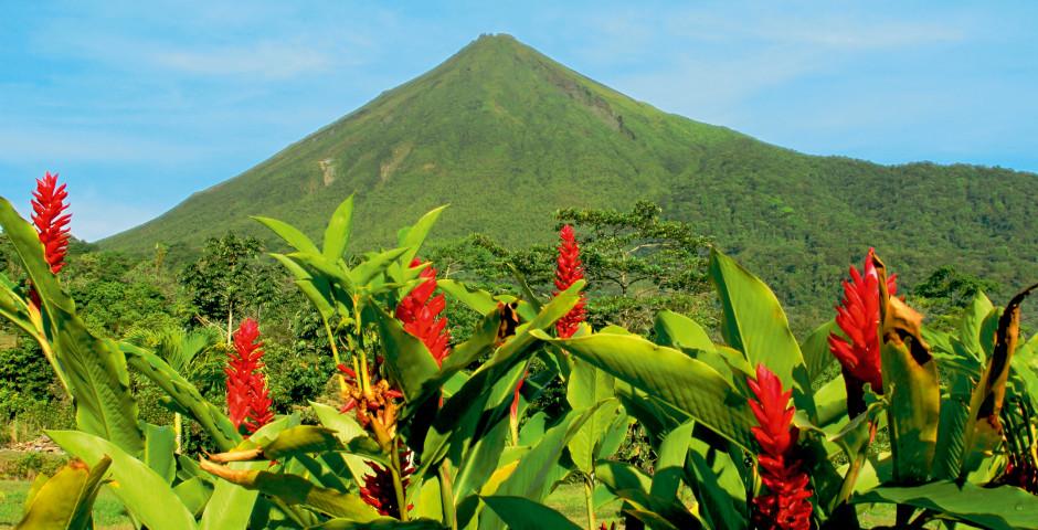 Bild 3 - Costa Rica – «Pura Vida»