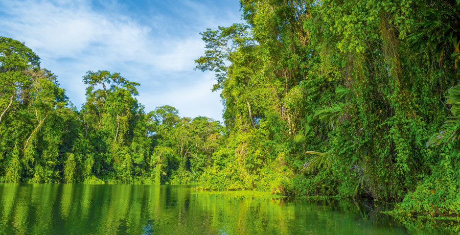 Bild 6 - Costa Rica – «Pura Vida»