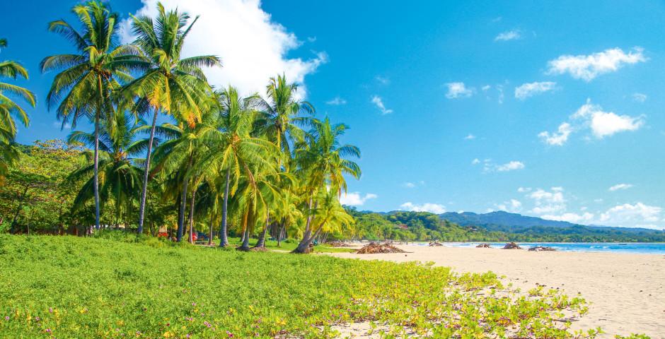 Bild 2 - Costa Rica – «Pura Vida»
