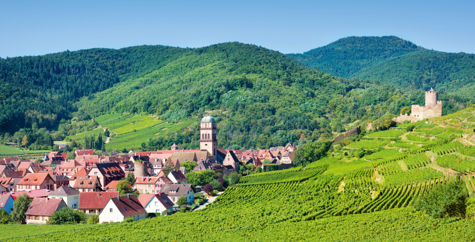 Bild 2 - Elsass - Wandern in malerischer Bergwelt