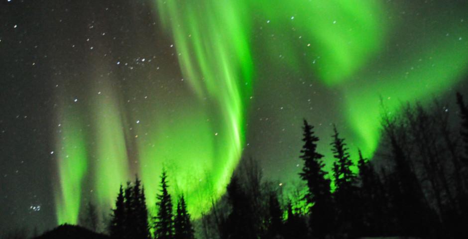 Bild 3 - Best of Alaska's Winter
