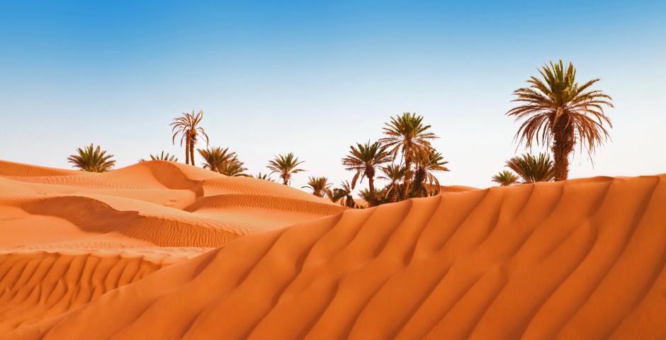 Le désert au déperat d'Agadir