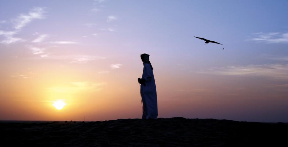 Coucher de soleil dans le désert - Émirats arabes unis