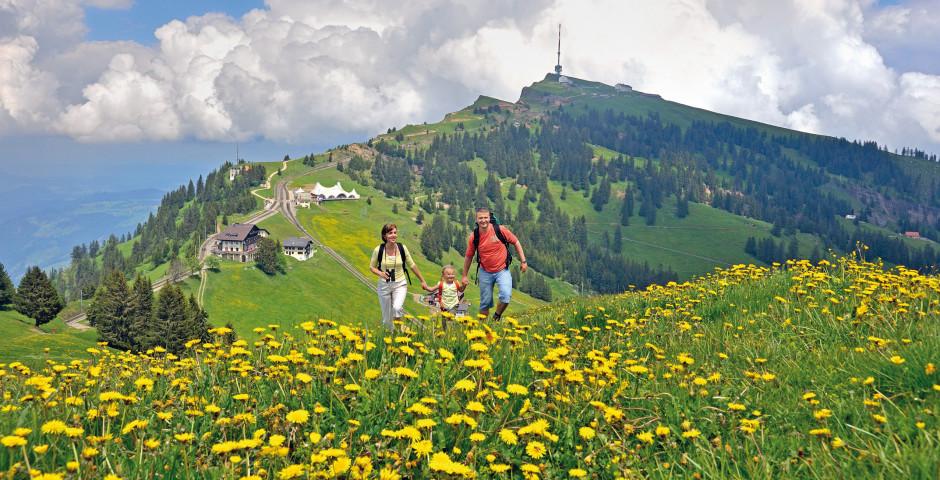 Wandern auf der Rigi - Zentralschweiz