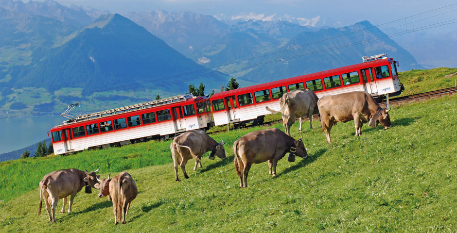 Zahnradbahn Rigi - Zentralschweiz
