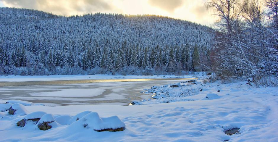 Schluchsee im Winter
