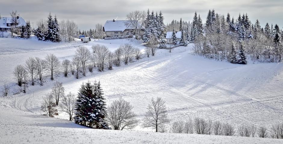 Vacances de neige dans la Forêt-Noire