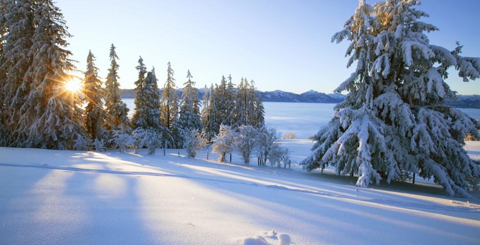 Allgäu en hiver