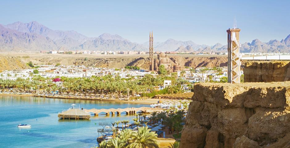 Strand & El Zeyad Papyrus - Sharm el-Sheikh