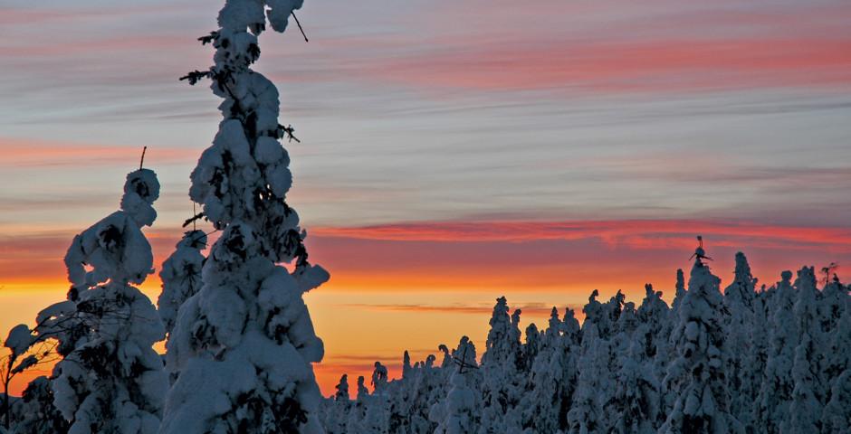 Été nordique, Laponie
