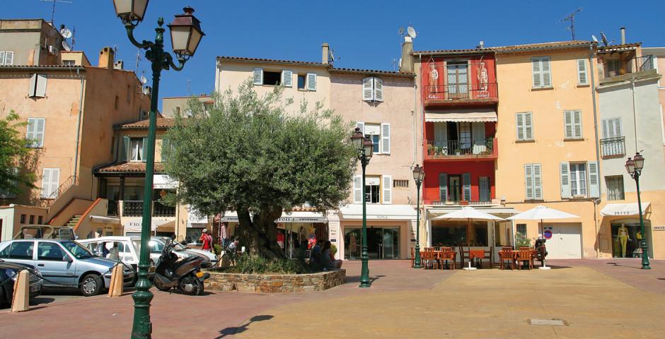 Saint-Tropez - Saint-Tropez & Umgebung (Côte d'Azur - Südfrenkreich)