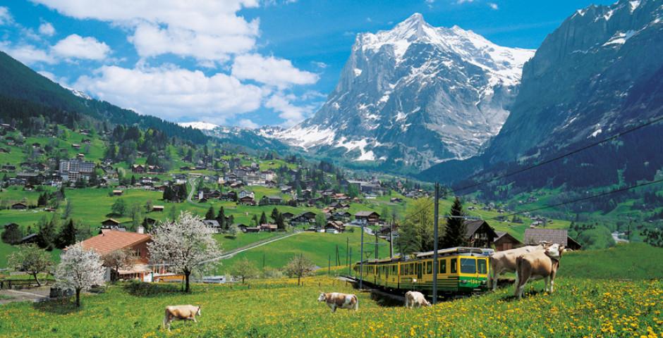 Wengeralpbahn - Région de la Jungfrau