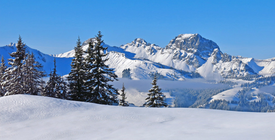 Sicht auf den Berg Videmanette, Gstaad
