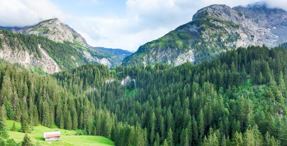 Gstaad - Saanenland