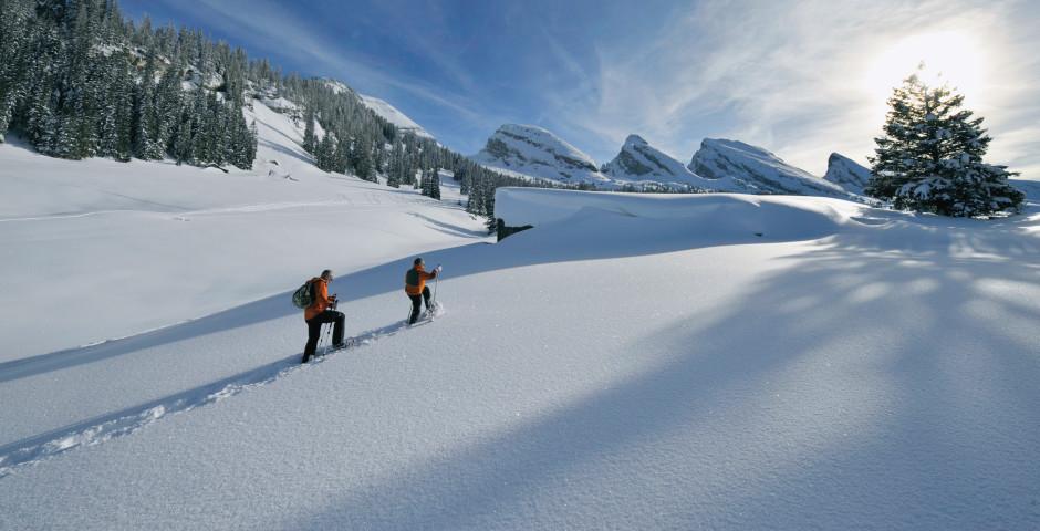 Toggenbourg en hiver