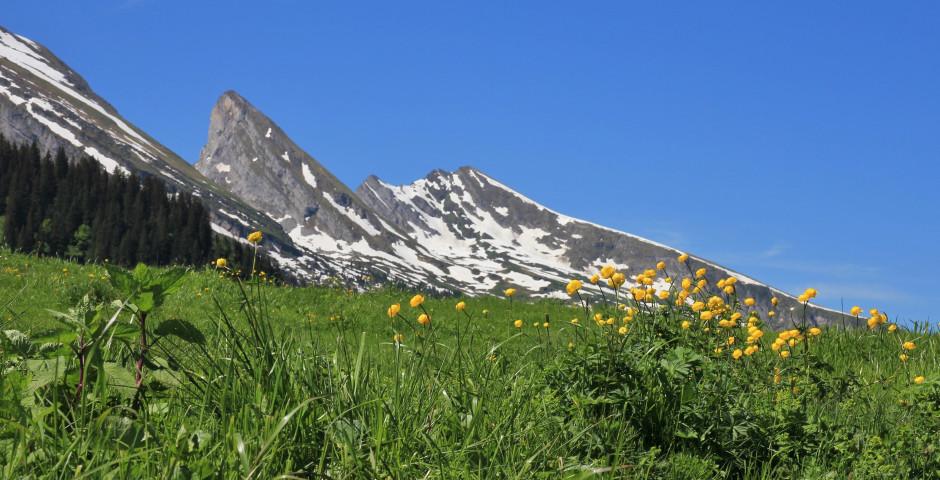 Vue sur les Churfirsten - Toggenbourg
