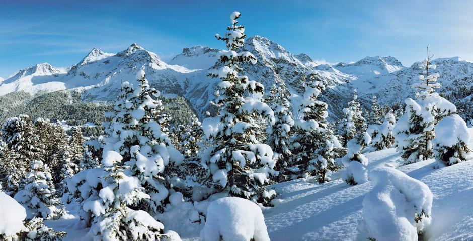 Paysage d'hiver enneigé - Arosa