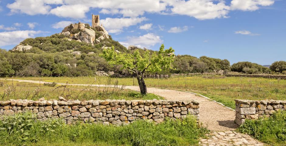 Castello di Pedres - Nord de la Sardaigne (Olbia)