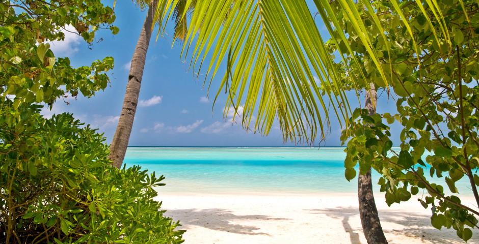 Malediven: fantastische Strände für Badeferien - Malediven