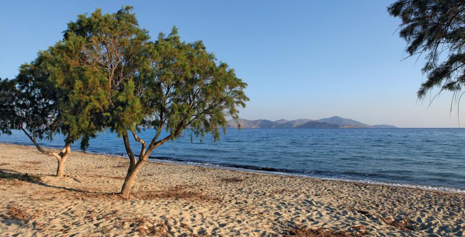 Strand in Tigaki - Kos