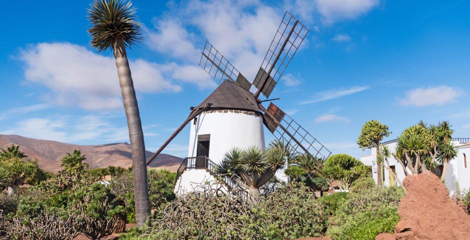 Traditionelle Windmühle in Antigua - Fuerteventura
